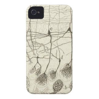 Cajal's Neurons 8 iPhone 4 Case