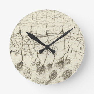 Cajal's Neurons 8 Round Clock