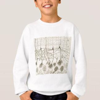 Cajal's Neurons 8 Sweatshirt