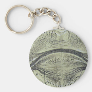 Cajal's spinal neurons - 5 basic round button key ring