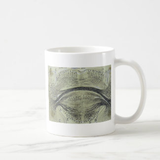 Cajal's spinal neurons - 5 coffee mug