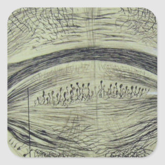 Cajal's spinal neurons - 5 square sticker