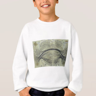 Cajal's spinal neurons - 5 sweatshirt