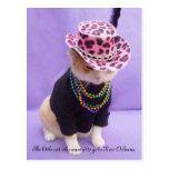 Cajun Bubba Kitty Postcard