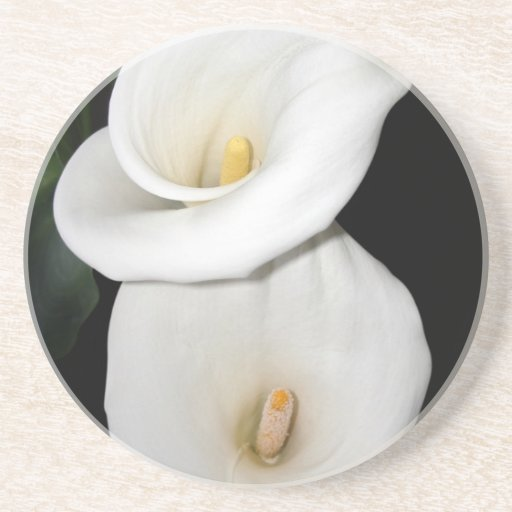 Cala Lilies Beverage Coasters