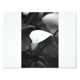 Cala-Lilly Flower Personalized Invites