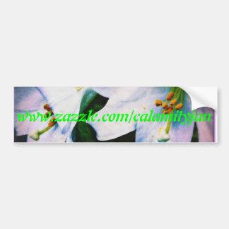 Calamityjan lilies bumper sticker greentext