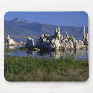 Calcium carbonate tufa, Mono Lake, CA Mouse Mat