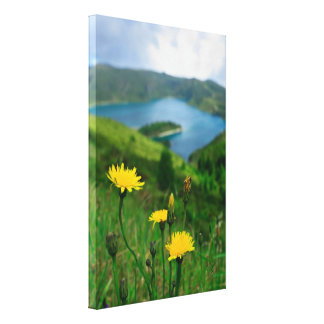 Caldera lake in Azores islands Stretched Canvas Prints