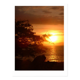 Caldera Port , Costa Rica Postcard