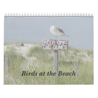 Calendar - Birds at the Beach
