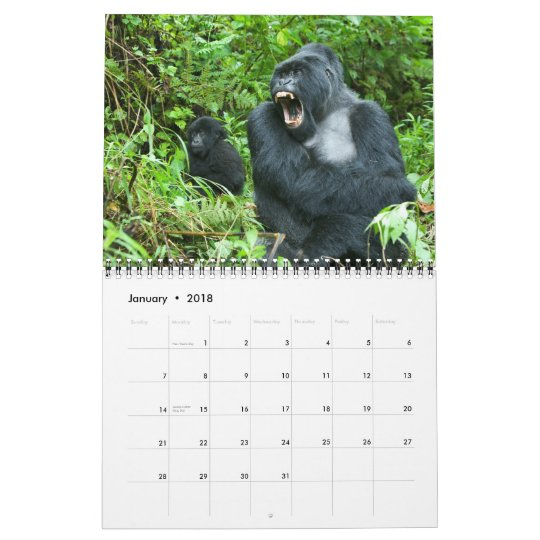 Calendar - Mountain Gorillas of Rwanda