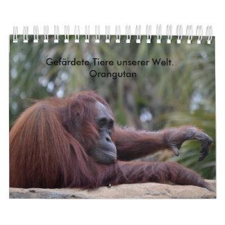 Calendar Orangutan