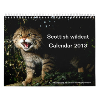 Calendar - Scottish wildcat