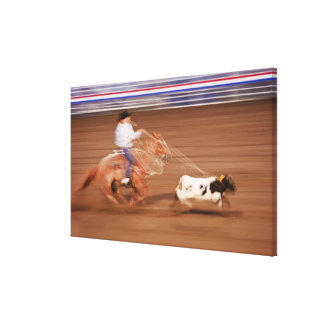 Calf roping 3 canvas print