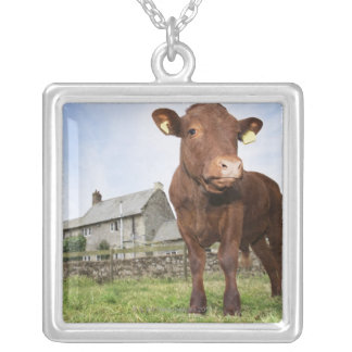 Calf standing in meadow square pendant necklace