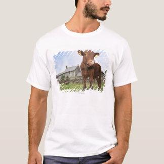Calf standing in meadow T-Shirt