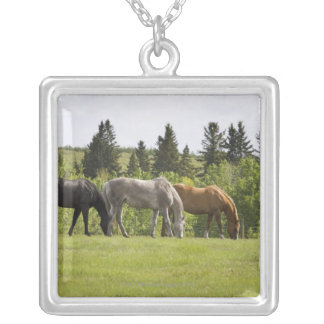 Calgary, Alberta, Canada Silver Plated Necklace
