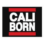 Cali Born Red