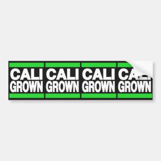 Cali Grown Green Bumper Sticker