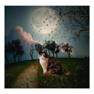 Cali Moon Photo Art