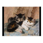 Calico Cat and Grey Kitten Fine Art Painting