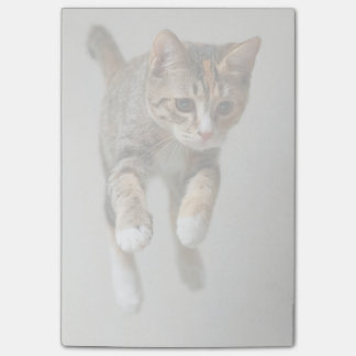 Calico Cat Jumping Post-it Notes