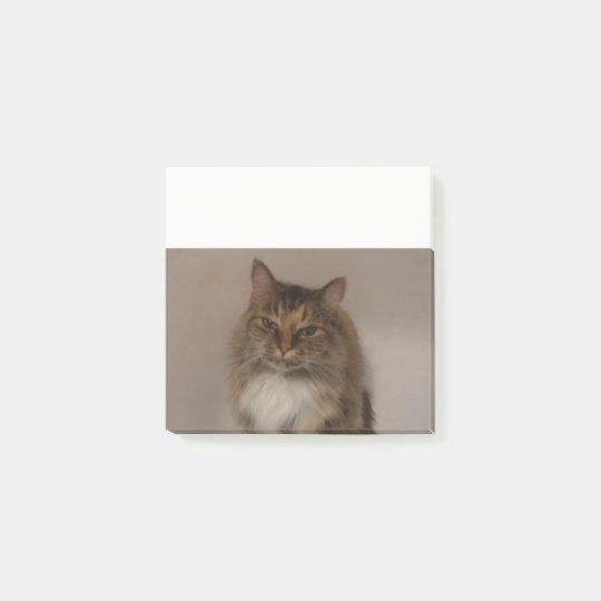 Calico Cat Post it Notes