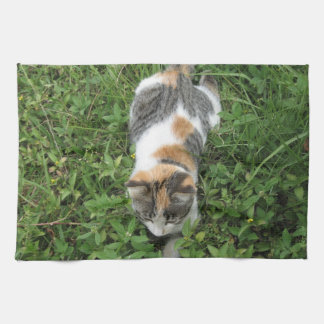Calico Cat Tea Towel