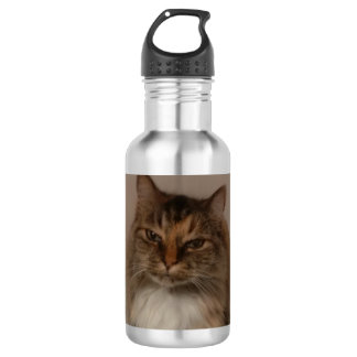 Calico Cat Water Bottle