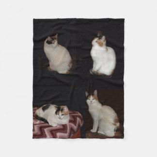 Calico Cats Fleece Blanket