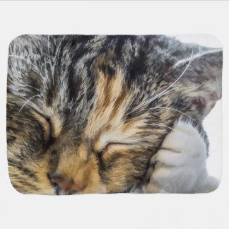 Calico Dreams Baby Blanket