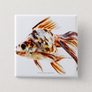 Calico Fantail Comet goldfish 15 Cm Square Badge