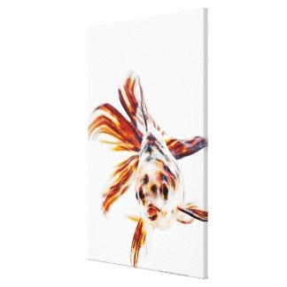 Calico Fantail Comet goldfish (Carassius Canvas Print