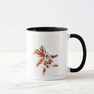 Calico Fantail Comet goldfish (Carassius Mug