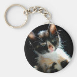 Calico Kitten Keychain