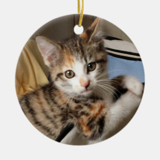 Calico Kitten Ornament
