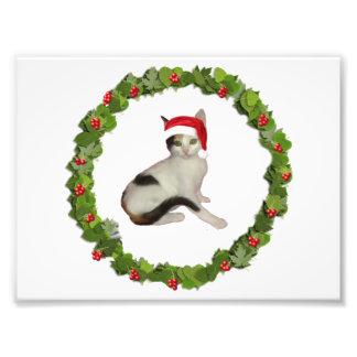Calico Kitten's Christmas Wreath Photo Print