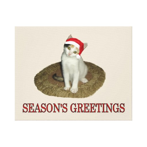 Calico Kitten's Season's Greetings Stretched Canvas Prints