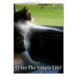 Calico Kitty The Simple Life Card