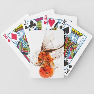 Calico lionhead goldfish (Carassius auratus) Poker Deck