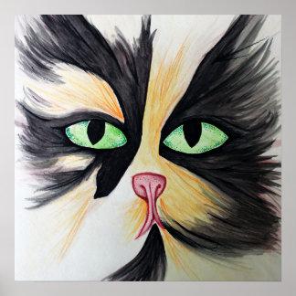 Calico Maine Coon Cat Print