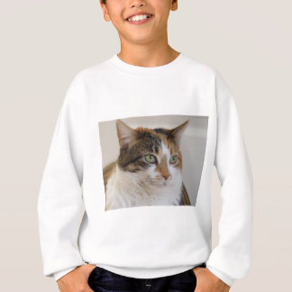 Calico tabby cat face sweatshirt