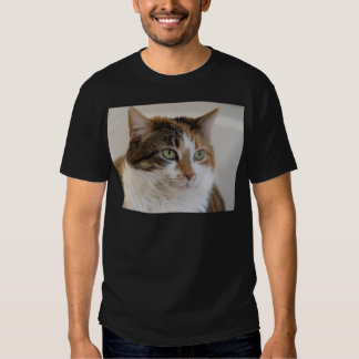 Calico tabby cat face t shirts