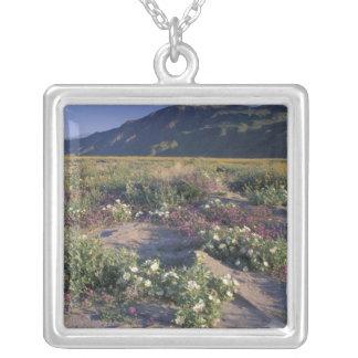 Califorinia, Anza-Borrego Desert SP, Sand Silver Plated Necklace