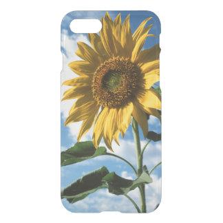 California, A Mammoth Sunflower (Helianthus) 2 iPhone 8/7 Case