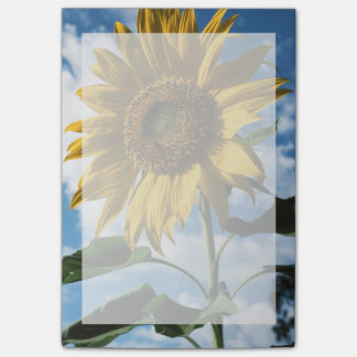 California, A Mammoth Sunflower (Helianthus) 2 Post-it Notes