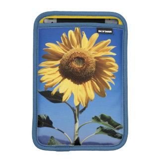 California, A Mammoth Sunflower (Helianthus) 3 iPad Mini Sleeve