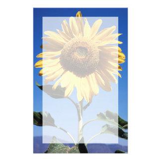 California, A Mammoth Sunflower (Helianthus) 3 Stationery