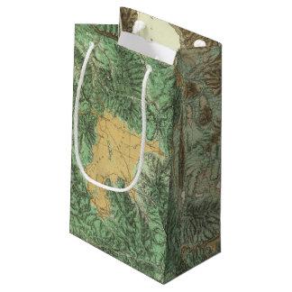 California and Nevada 2 Small Gift Bag